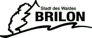brilon-logo-neu