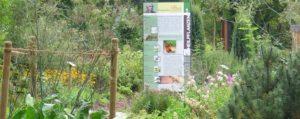 Bad Camberg Heilpflanzen nach Kneipp