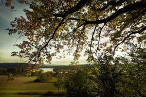 Radolfzell Aussicht auf den Mindelsee