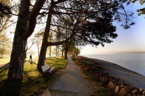 Radolfzell der Park von Mettnau