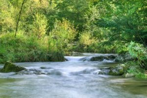 Prien am Chiemsee Natur