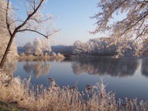 Feldberg Feldberg im Winter