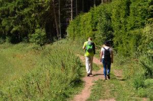 Der Achtsamkeitspfad Wandern in Manderscheid